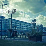 WordPress Eindhoven